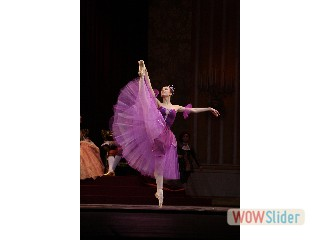 balletto viola