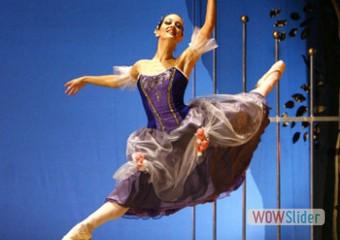 CONTATTI 7Muse ballerina