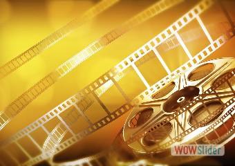 CONTATTI 7Muse pellicola gialla